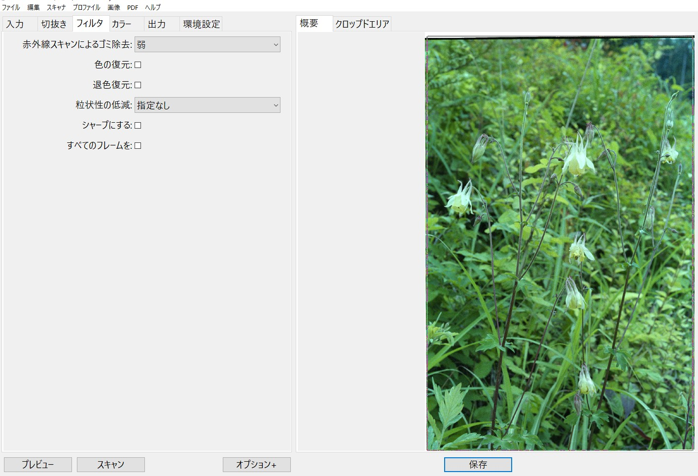 f:id:yasuo_ssi:20200824234623j:plain