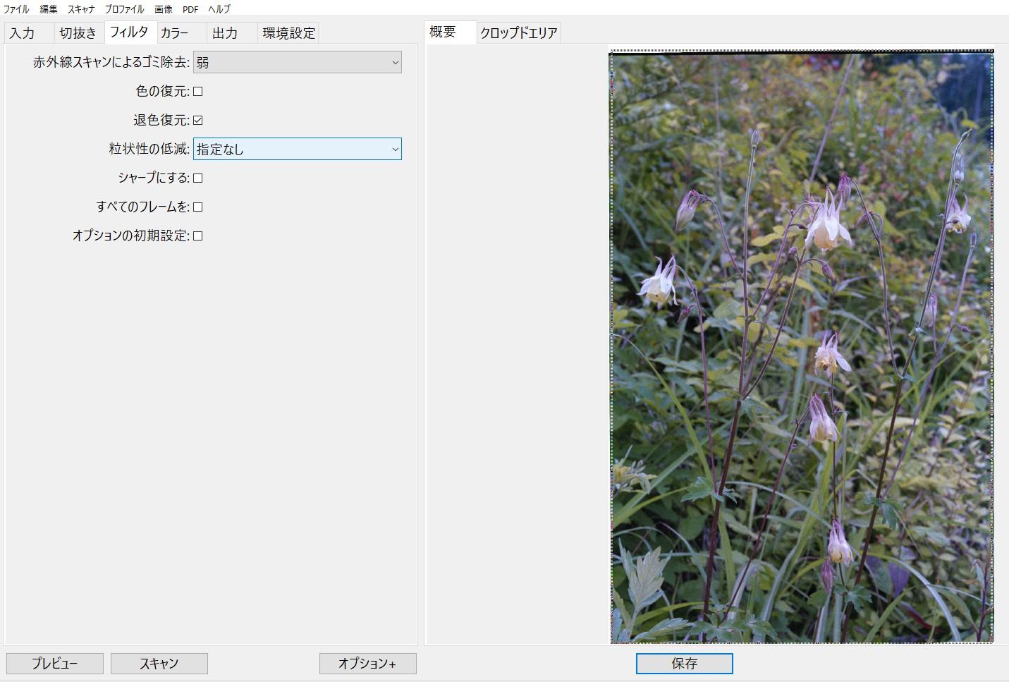 f:id:yasuo_ssi:20200824234826j:plain