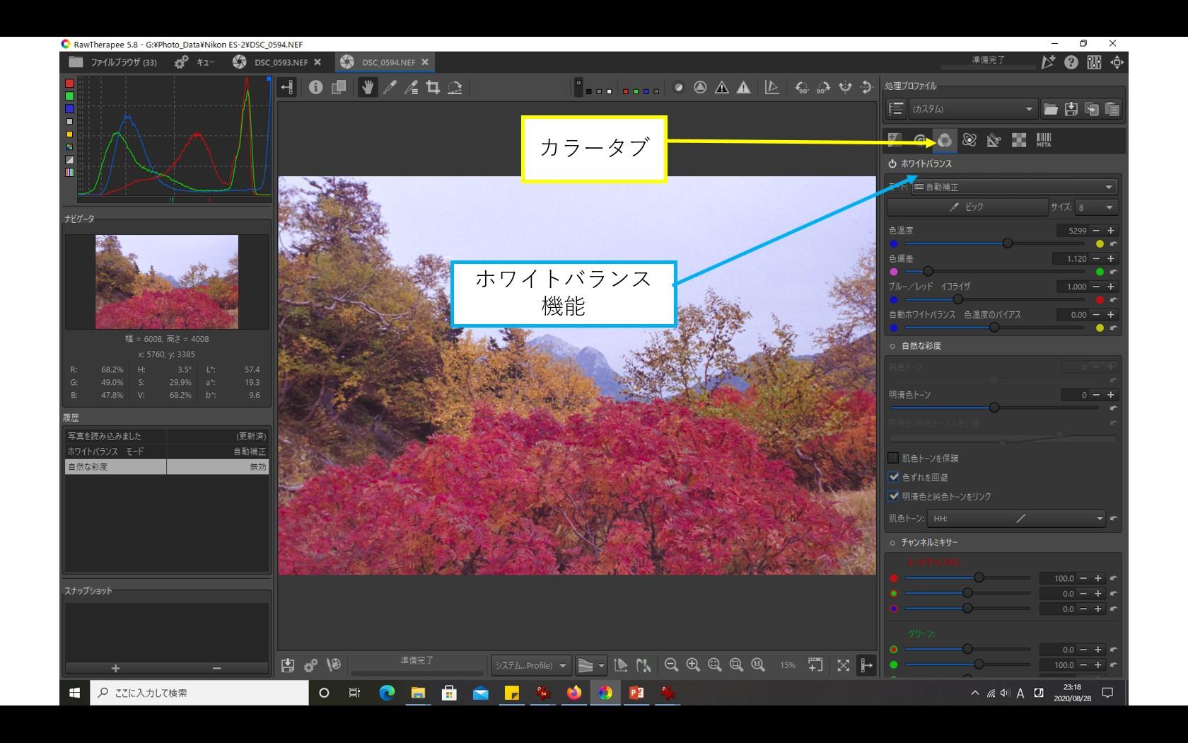 f:id:yasuo_ssi:20200828231934j:plain