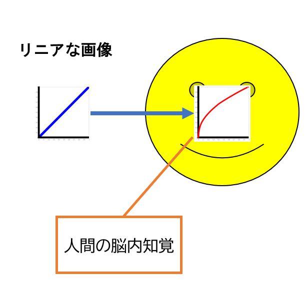 f:id:yasuo_ssi:20201106000534j:plain