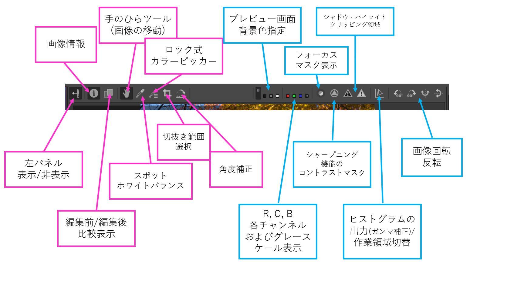 f:id:yasuo_ssi:20201206221507j:plain