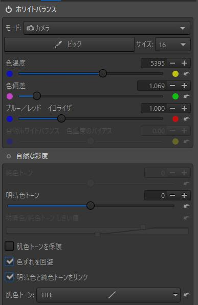 f:id:yasuo_ssi:20201207182102j:plain