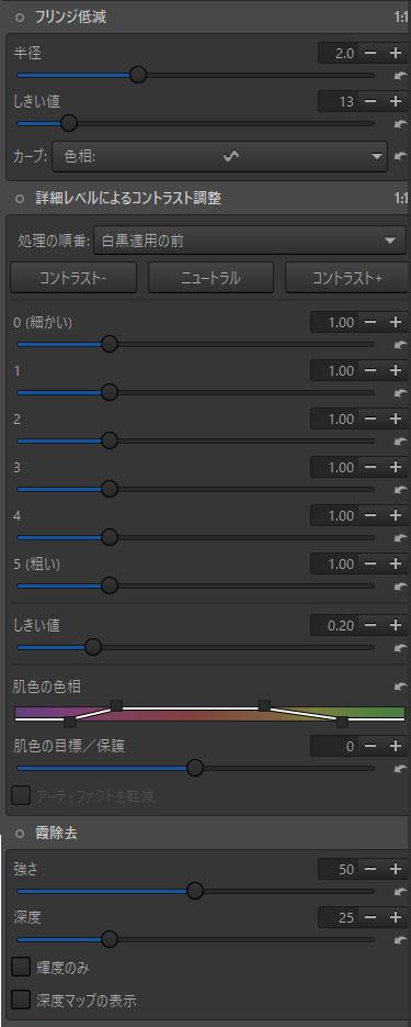 f:id:yasuo_ssi:20201207204520j:plain