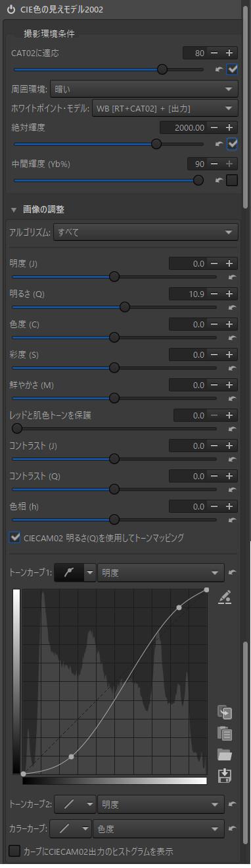 f:id:yasuo_ssi:20201231105945j:plain