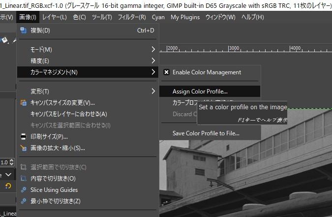 f:id:yasuo_ssi:20210122213035j:plain