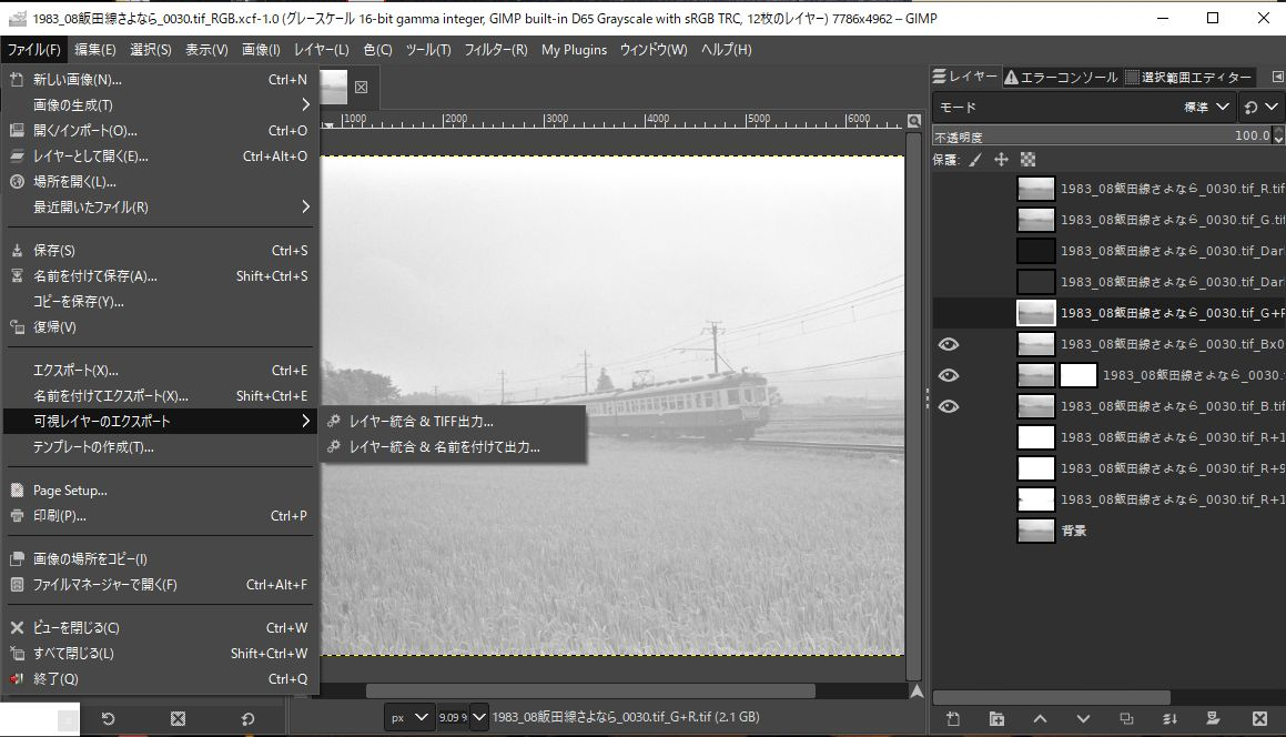 f:id:yasuo_ssi:20210225160031j:plain