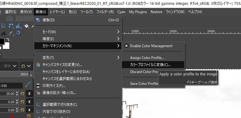 f:id:yasuo_ssi:20210307190657j:plain