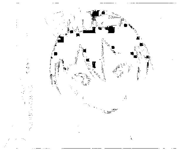 f:id:yasupiro0721:20161204094707p:plain