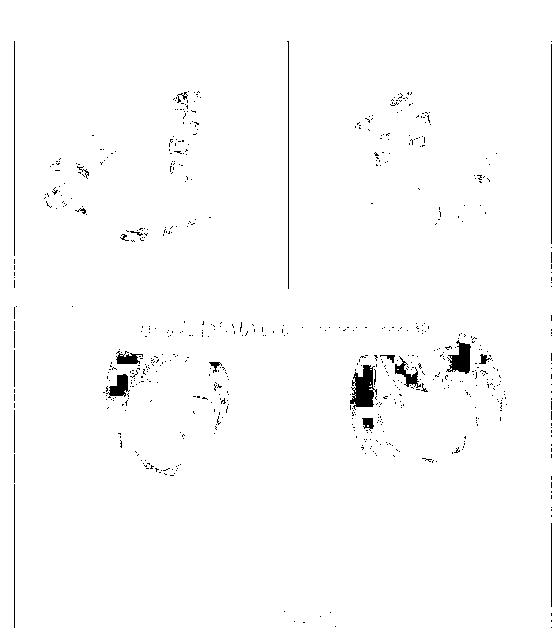 f:id:yasupiro0721:20161204095826p:plain