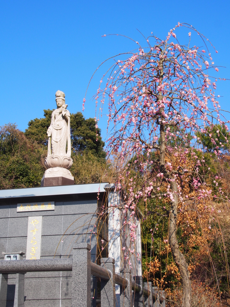 f:id:yasuragi-reien:20170509095138j:plain