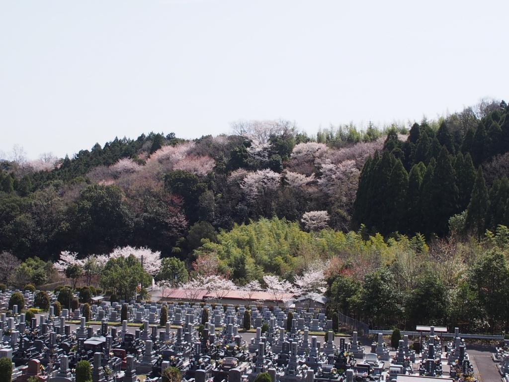 f:id:yasuragi-reien:20180330153525j:plain
