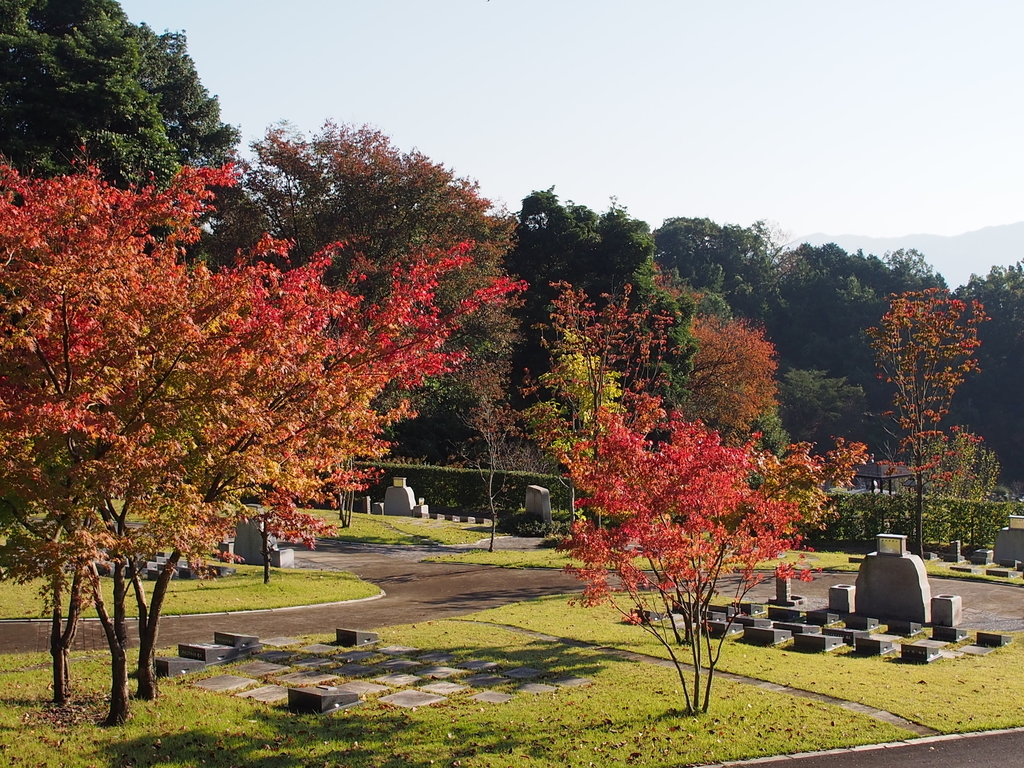 f:id:yasuragi-reien:20180909130259j:plain
