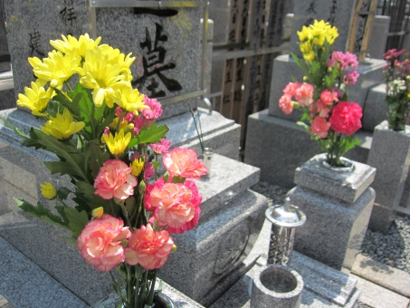 f:id:yasuragi-reien:20190731125807j:plain