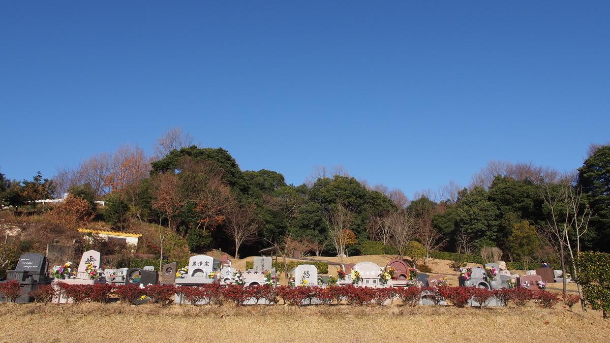 f:id:yasuragi-reien:20200105152011j:plain