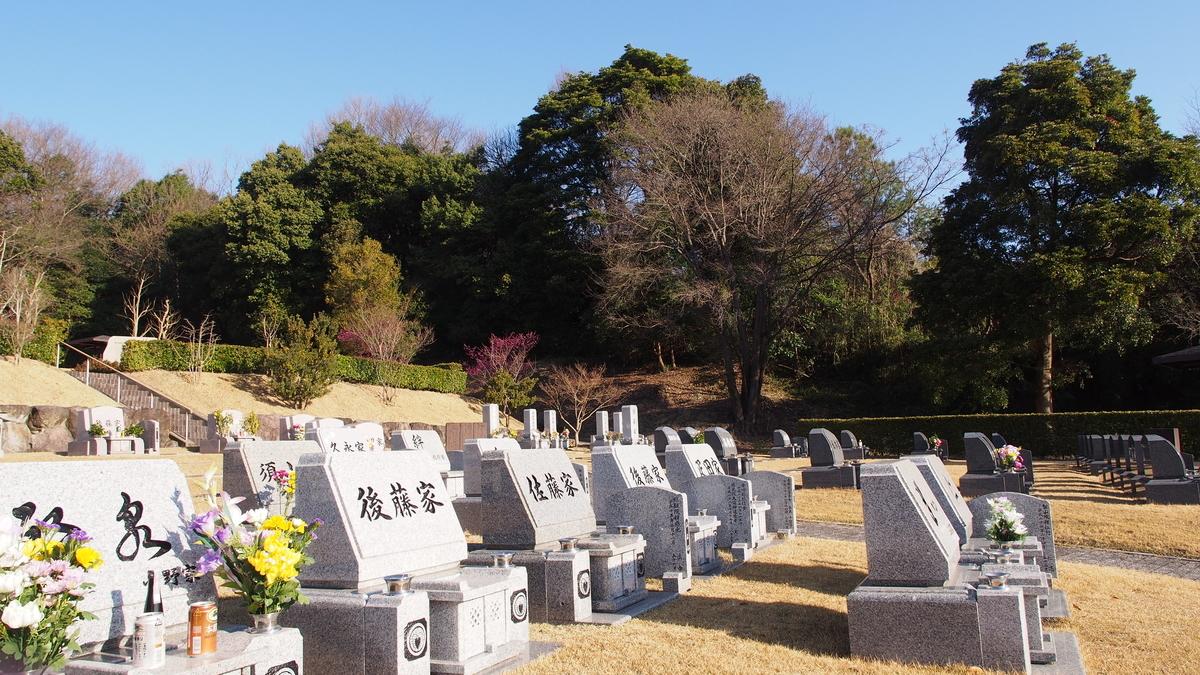 f:id:yasuragi-reien:20200228083154j:plain