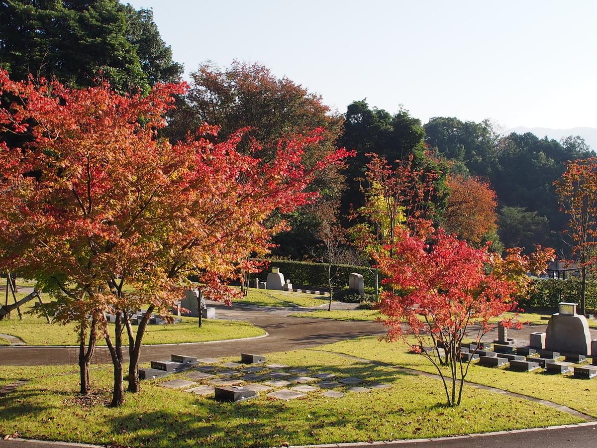 f:id:yasuragi-reien:20200924153024j:plain