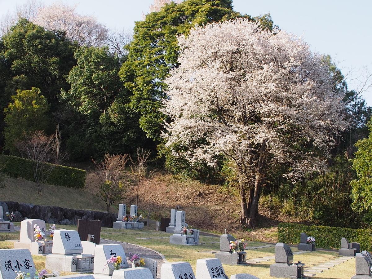 f:id:yasuragi-reien:20201218150620j:plain