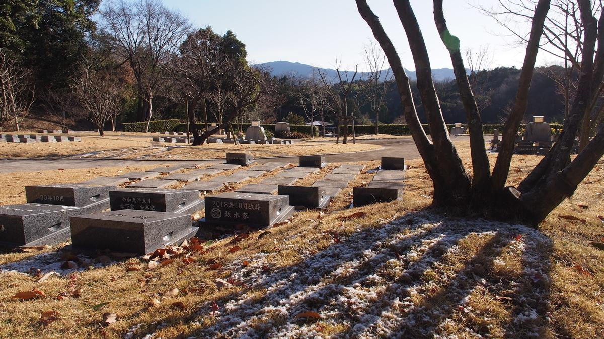 f:id:yasuragi-reien:20210110101243j:plain