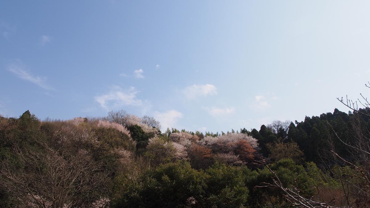 f:id:yasuragi-reien:20210324155843j:plain