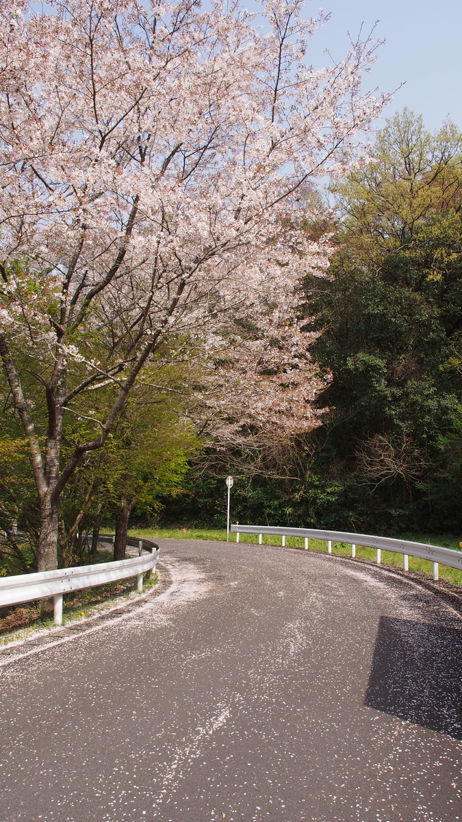 f:id:yasuragi-reien:20210329162508j:plain