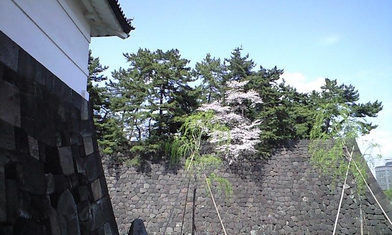 f:id:yasutaniwaki:20100410135445j:image