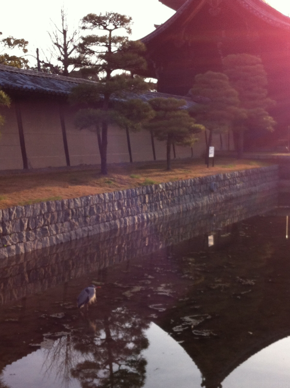 f:id:yasutaniwaki:20120320064808j:image
