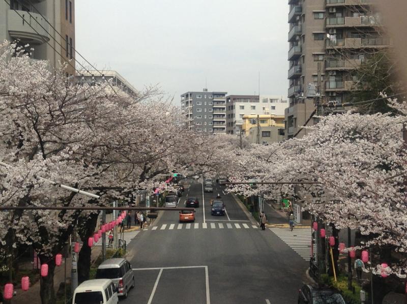 f:id:yasutaniwaki:20130323124239j:image