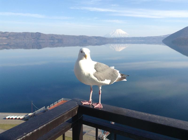 f:id:yasutaniwaki:20130421070750j:image