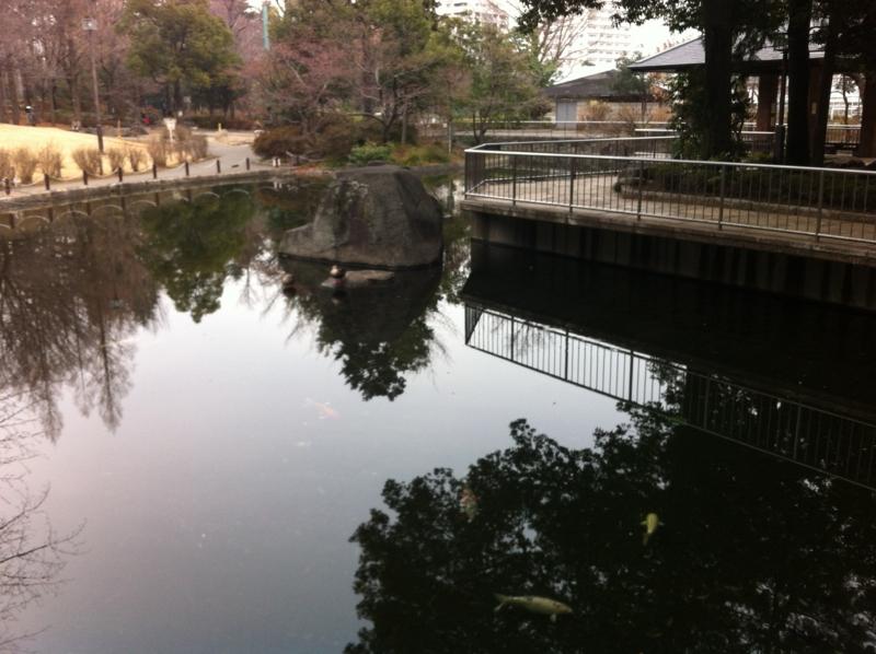 f:id:yasutaniwaki:20140202083702j:image