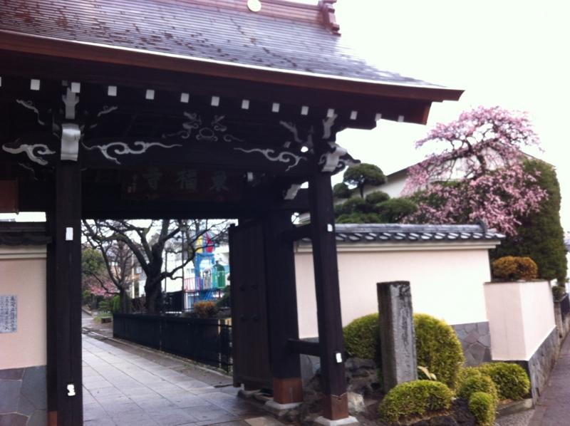 f:id:yasutaniwaki:20140302093858j:image