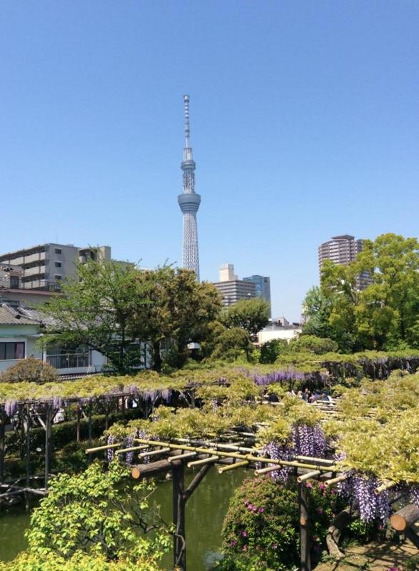 f:id:yasutaniwaki:20140428053508j:image