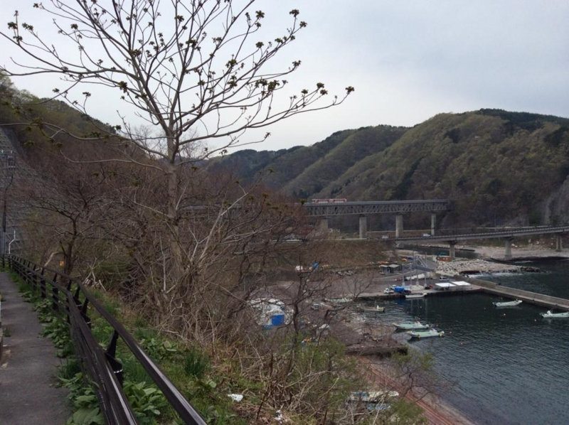 f:id:yasutaniwaki:20140507054556j:image