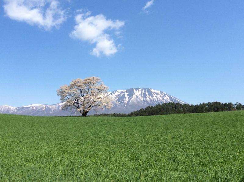 f:id:yasutaniwaki:20140507054724j:image