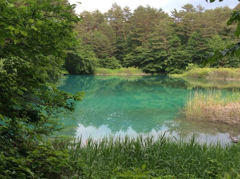 f:id:yasutaniwaki:20140623044016j:image