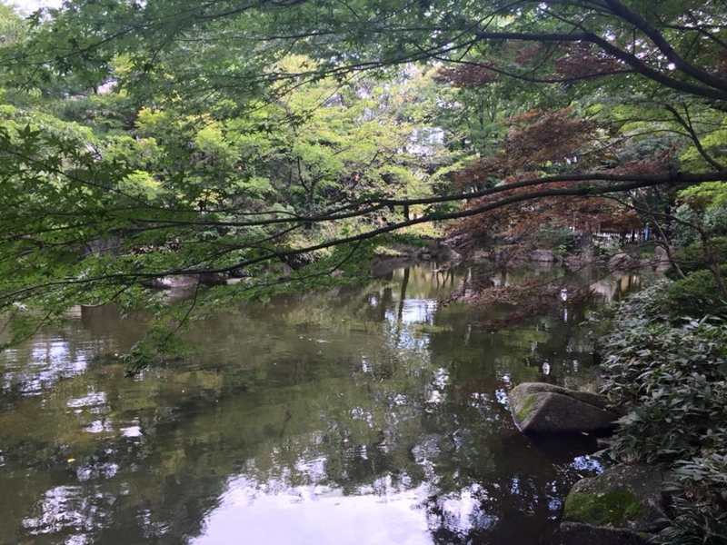 f:id:yasutaniwaki:20150914054725j:image