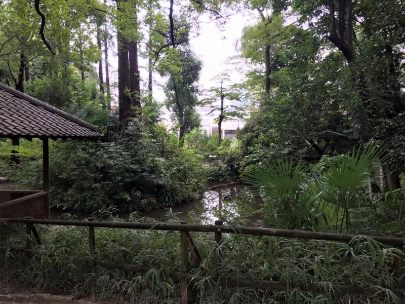 f:id:yasutaniwaki:20150928062600j:image
