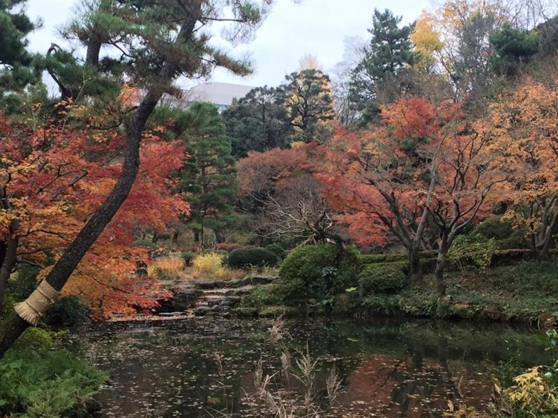 f:id:yasutaniwaki:20151213155804j:image