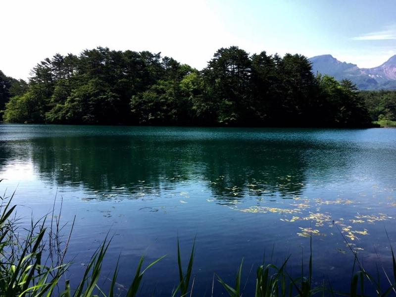f:id:yasutaniwaki:20160620044347j:image