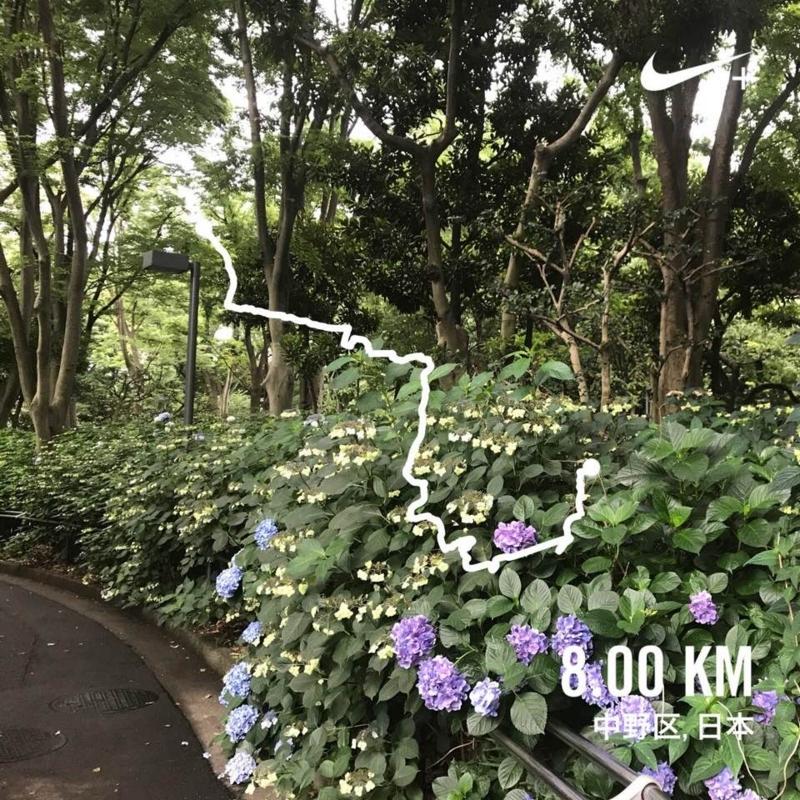 f:id:yasutaniwaki:20170703070547j:image