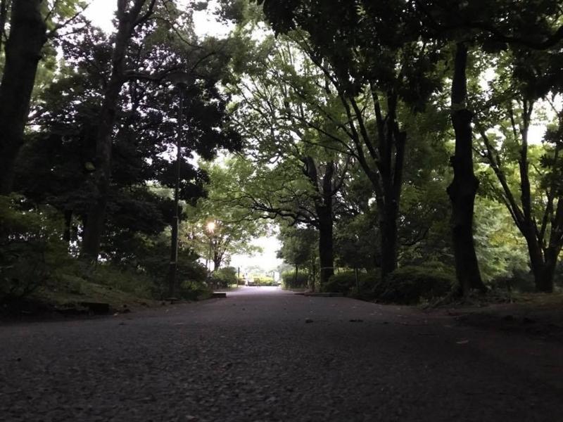 f:id:yasutaniwaki:20170731054350j:image