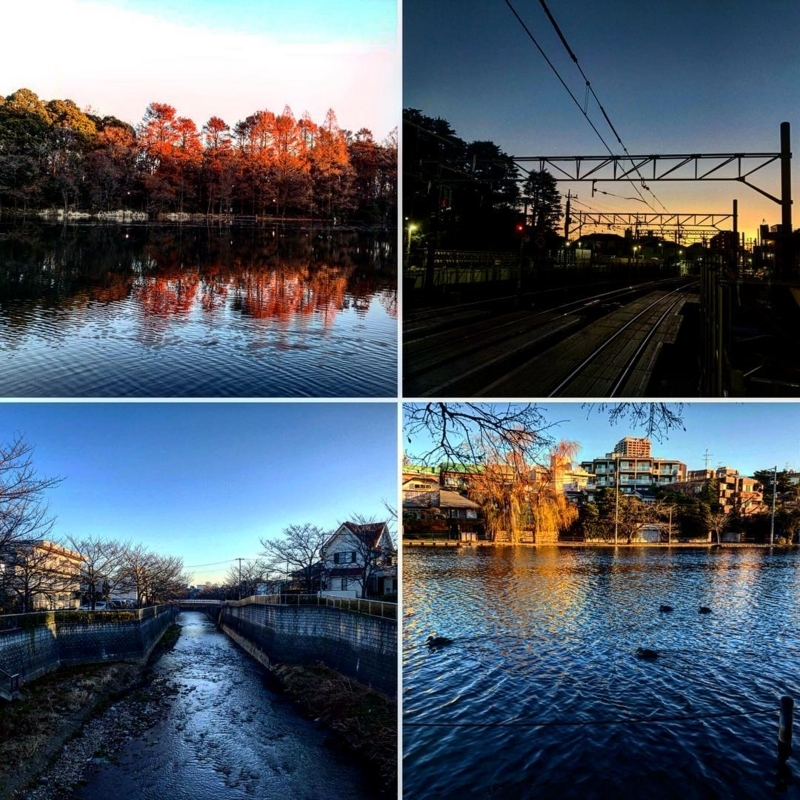 f:id:yasutaniwaki:20180103064830j:image