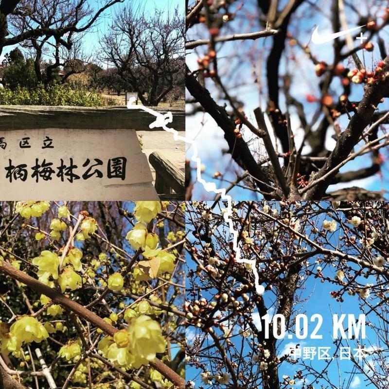 f:id:yasutaniwaki:20180212144222j:image