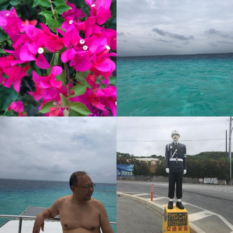 f:id:yasutaniwaki:20180604060410j:image