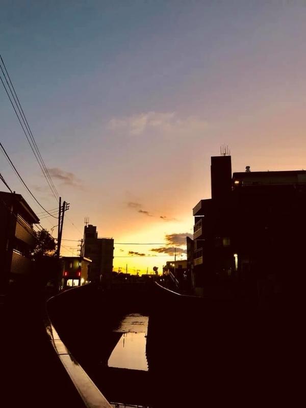 f:id:yasutaniwaki:20190101074818j:image