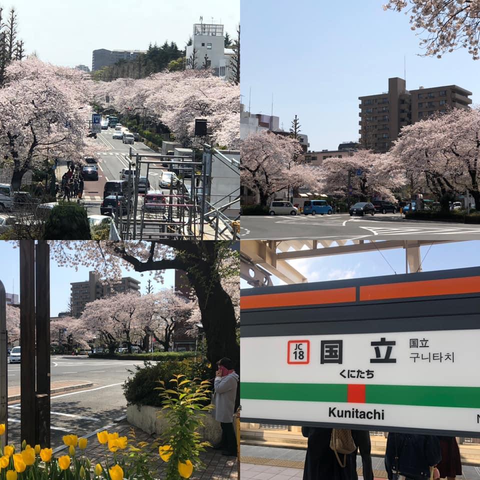 f:id:yasutaniwaki:20190408064007j:plain