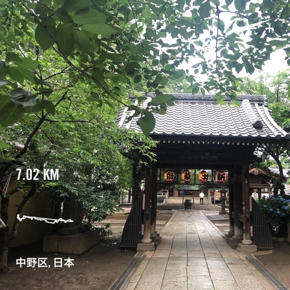 f:id:yasutaniwaki:20190609163241j:plain