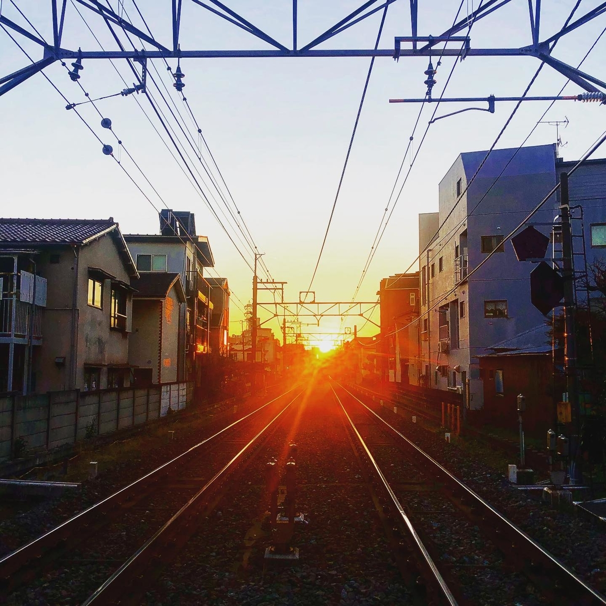 f:id:yasutaniwaki:20200202203615j:plain