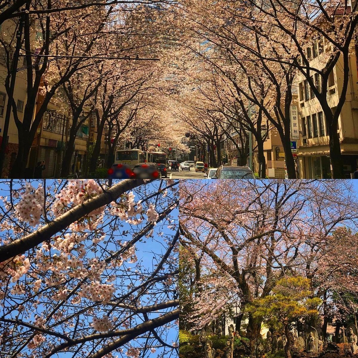 f:id:yasutaniwaki:20200323061318j:plain