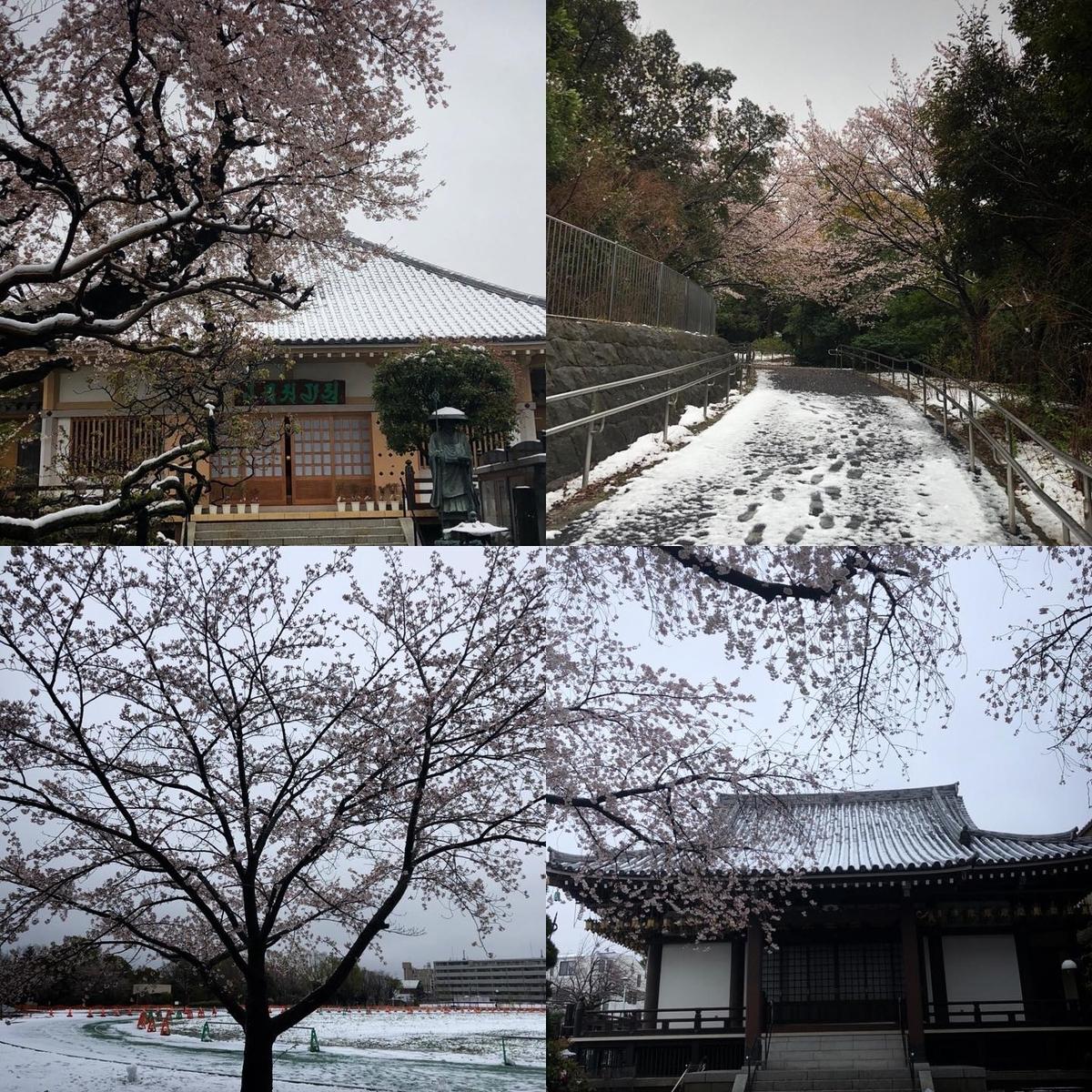 f:id:yasutaniwaki:20200329222527j:plain