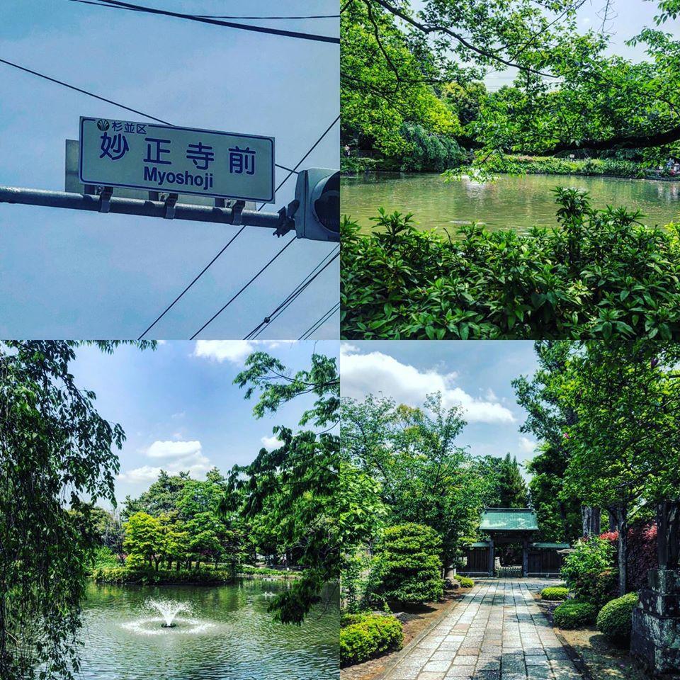 f:id:yasutaniwaki:20200505172155j:plain